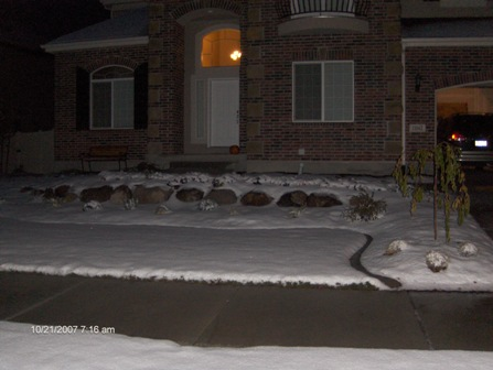snowontrip.jpg