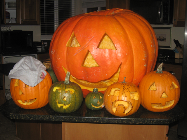 Big papa pumkins and all the little pumpkinlets